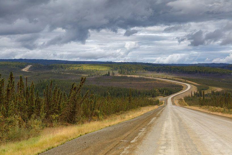 Road to van Menno Schaefer