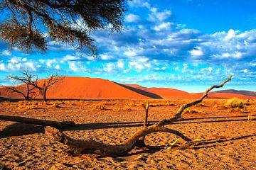 Afgebroken tak in de Sossusvlei, Namibië van Rietje Bulthuis