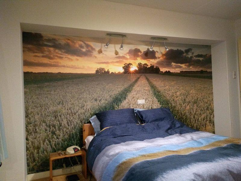 Klantfoto: Zomerse zonsondergang van Ron Buist, op naadloos behang