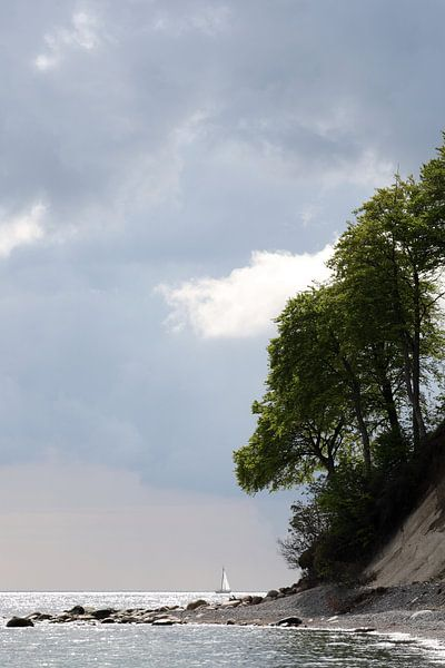 Kreideküste von Jana Behr