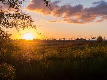 Zonsondergang Nauerna, Assendelft, Noord-Holland van Picsall Photography