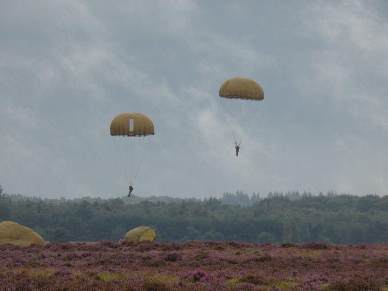 Dit zijn parachutisten Market Garden 2017 Ede van Wilbert Van Veldhuizen