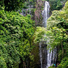 Wasserfall auf Maui von Dirk Rüter