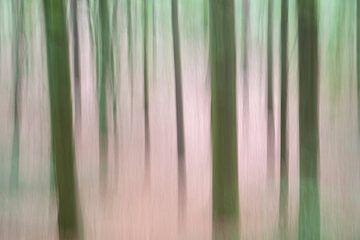 Bomen in beweging - lente 2018 - 2 van Danny Budts