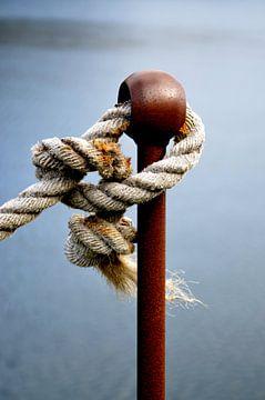 Verbonden, touw met knopen. van Iris Heuer