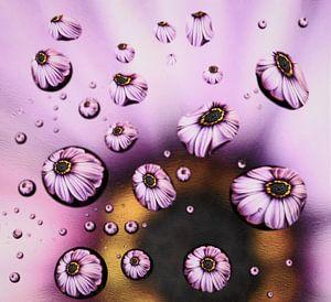 Drops! von Arjanne Gols
