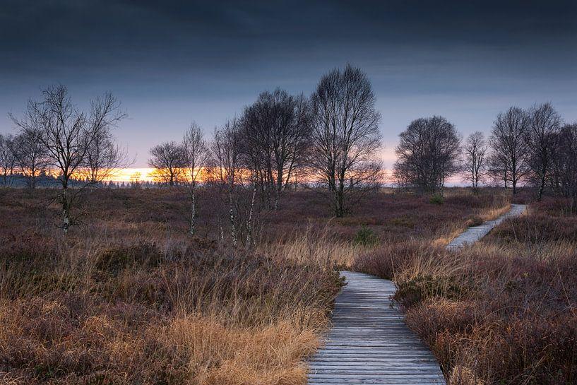Follow the Path van Rob Christiaans