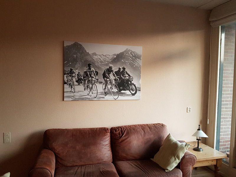 Kundenfoto: Tour de France 1963: Anquetil, Bahamontes und Poulidor von Bridgeman Images, auf leinwand