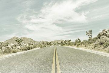 Joshua Trees an einer Landstraße von Melanie Viola