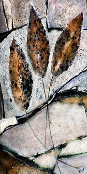Herfst - bladeren op steen van Christine Nöhmeier