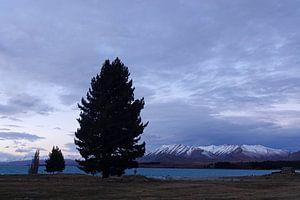 Meer van Tekapo in Nieuw Zeeland