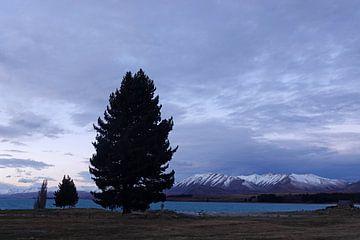 Lac Tekapo, Nouvelle-Zélande sur Aagje de Jong