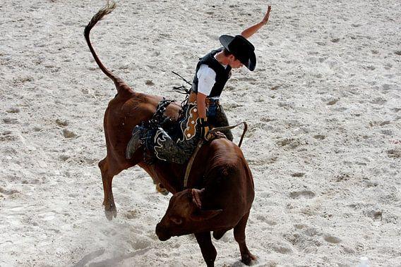 Rodeo Cowboy van Gerrit de Heus