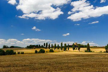 Cipressenlaan en kasteel - Toscane - Italie van Jeroen(JAC) de Jong