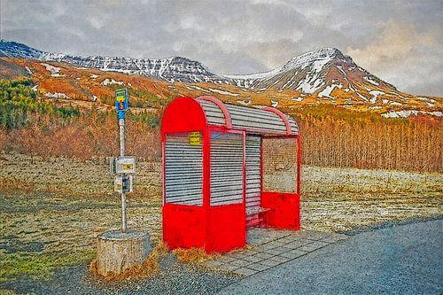 IJsland met de bus