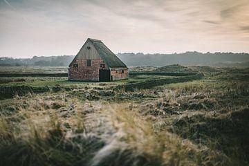 Texel XX van Steven Goovaerts