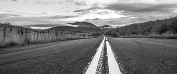 Die Straße von Niels Hemmeryckx