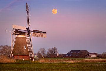Mühle De Meervogel von Marga Vroom