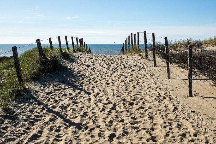 Naar het strand van Michel van Kooten