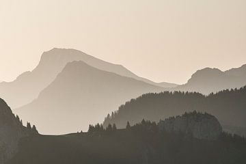Le Mont de Grange von Antoine Berger