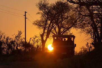 Op safari in het Krugerpark van Arthur van Iterson