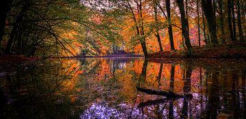 Spiegelmeer van Peter Heins