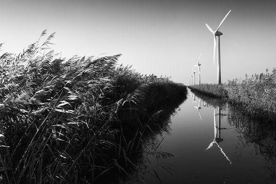 Flevoland, klei en windmolens