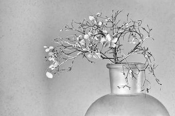 Stilleben mit Hortensien von Ellen Driesse