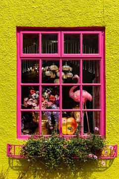 Das rosa Schaufenster von Licht! Fotografie