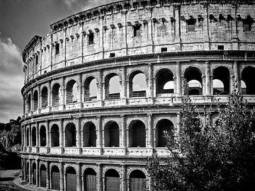 ROME Colosseum sur