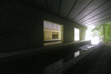 Licht aan het eind van de tunnel 1 sur Michiel Balvers