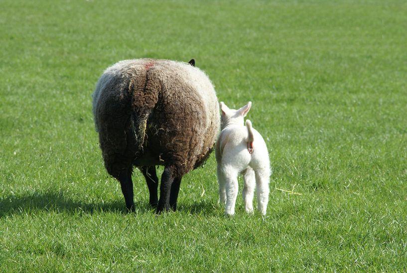 Moeder en kind. van Bas Smit