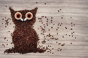 Night owl on wood