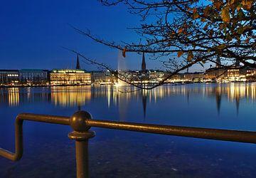 Hamburg op de Alster van Martina Fornal