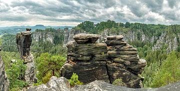 Nationalpark Sächsische Schweiz, Elbsandstein, Lohmen, Saksen, Duitsland, van Rene van der Meer