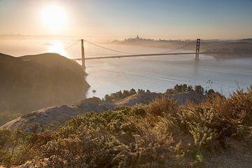 San Francisco van Yvs Doh