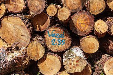Stapel gekapt hout met vezel aanduiding van Evert Jan Luchies