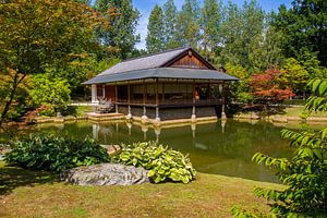 Japanse tuin van Qeimoy