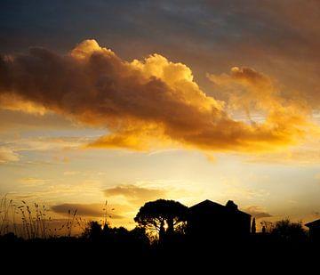 Warmer Sonnenuntergang von Corinne Welp