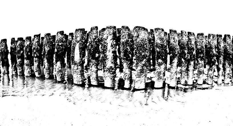 aan de kust-2 van Yvonne Blokland