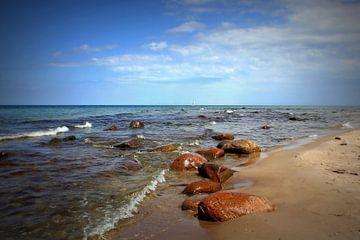Ostseesteine von Ostsee Bilder