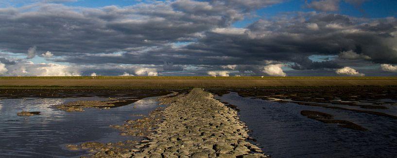 Waddenzee bij Westhoek (Het Bildt) van Meindert van Dijk