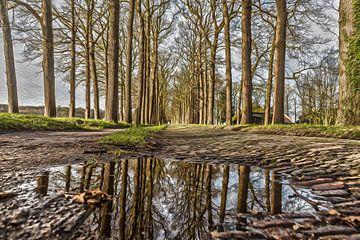 Reflexion von Michiel Leegerstee