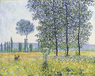 Sunlight Effect under the Poplars, Claude Monet sur