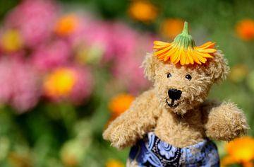 Teddybeer met bloemetjeshoed van