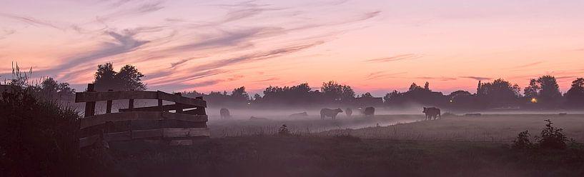 landscape  van Dirk van Egmond