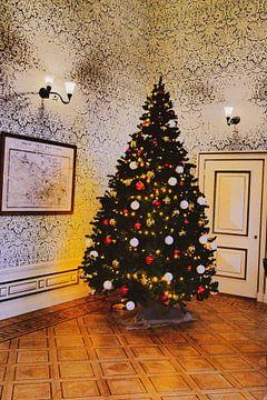 Spoorwegmuseum - Kerstboom 1e klas van Wout van den Berg