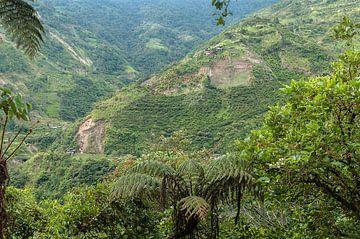 Ecuador: Sangay National Park (Baños) van Maarten Verhees