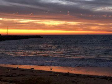 Sonnenuntergang in Perth von Afrodite Zegers