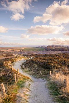 Pad door het Morsum-Kliff natuurreservaat, Sylt van Christian Müringer